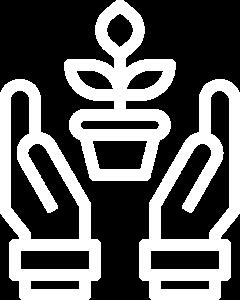 Jardinagem 4
